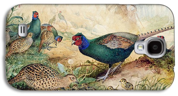 Japanese Pheasants Galaxy S4 Case