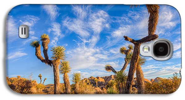 Galaxy S4 Case featuring the photograph Joshua Tree Dawn by Rikk Flohr