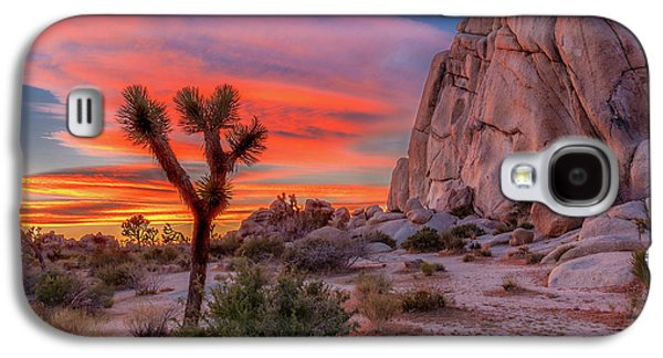 Landscapes Galaxy S4 Case - Joshua Tree Sunset by Peter Tellone