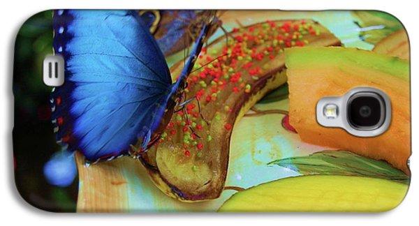 Juicy Fruit Galaxy S4 Case by Debbi Granruth