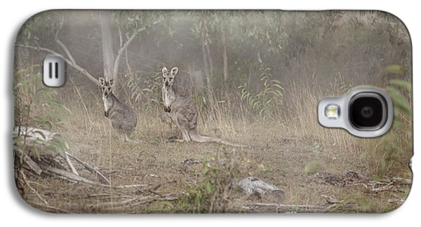 Kangaroos In The Mist Galaxy S4 Case by Az Jackson