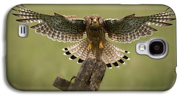 Animal Themes Galaxy S4 Cases - Kestrel on Final Approach Galaxy S4 Case by Andy Astbury