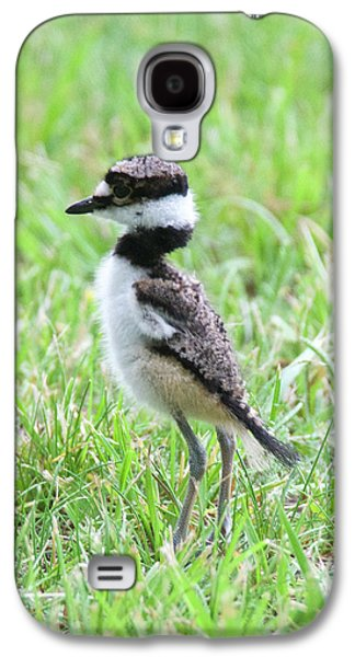 Killdeer Galaxy S4 Case - Killdeer Chick 3825 by Michael Peychich