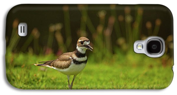 Killdeer Galaxy S4 Case - Killdeer by Karol Livote