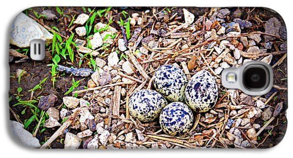 Killdeer Galaxy S4 Case - Killdeer Nest by Cricket Hackmann