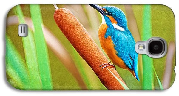 Kingfisher Galaxy S4 Case - Kingfisher by Laura D Young