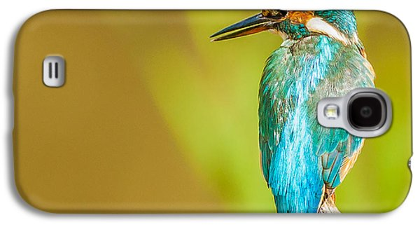 Kingfisher Galaxy S4 Case