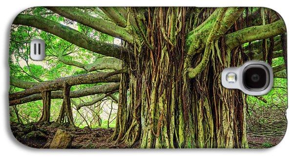 Kipahulu Banyan Tree Galaxy S4 Case