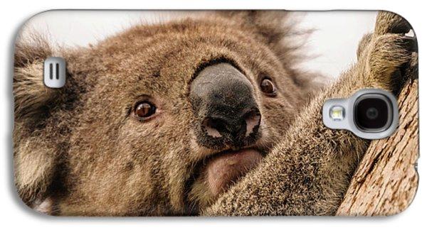 Koala 3 Galaxy S4 Case