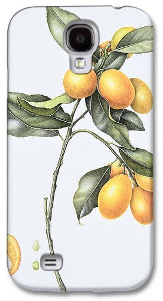 Kumquat Galaxy S4 Case
