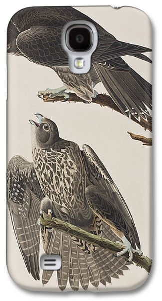 Labrador Falcon Galaxy S4 Case by John James Audubon