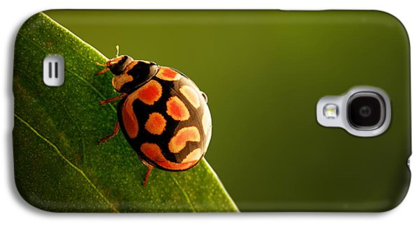 Ladybug  On Green Leaf Galaxy S4 Case by Johan Swanepoel