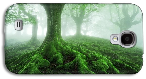 Land Of Roots Galaxy S4 Case by Mikel Martinez de Osaba