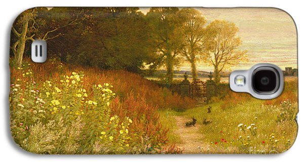 Rural Scenes Galaxy S4 Case - Landscape With Wild Flowers And Rabbits by Robert Collinson