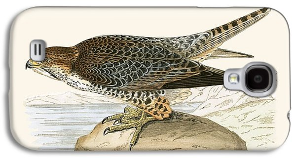 Lanner Falcon Galaxy S4 Case by English School
