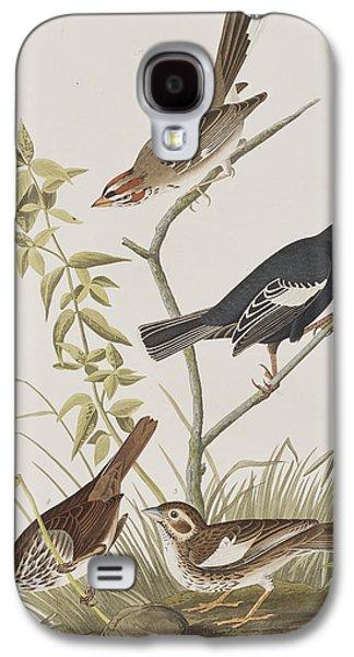 Lark Finch Prairie Finch Brown Song Sparrow Galaxy S4 Case