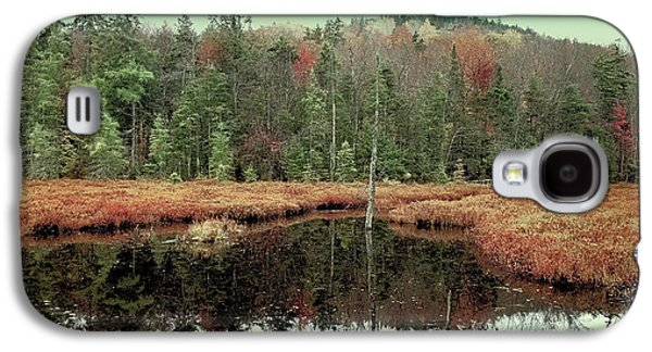 Galaxy S4 Case featuring the photograph Last Of Autumn On Fly Pond by David Patterson