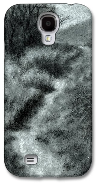 Late Afternoon Walk Galaxy S4 Case
