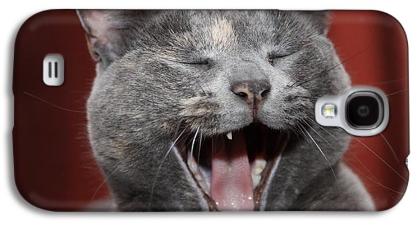 Laughing Kitty Galaxy S4 Case