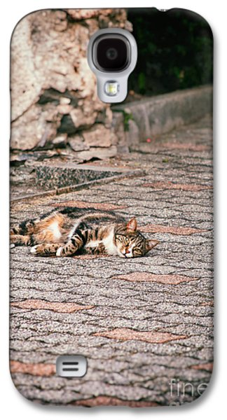 Galaxy S4 Case featuring the photograph Lazy Cat    by Silvia Ganora