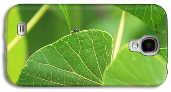 Ant Galaxy S4 Case - Leaf And Ant by Kathleen Wong