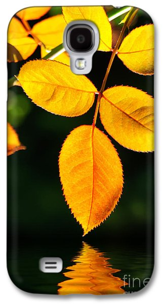 Fall Leaves Galaxy S4 Cases - Leafs over water Galaxy S4 Case by Carlos Caetano