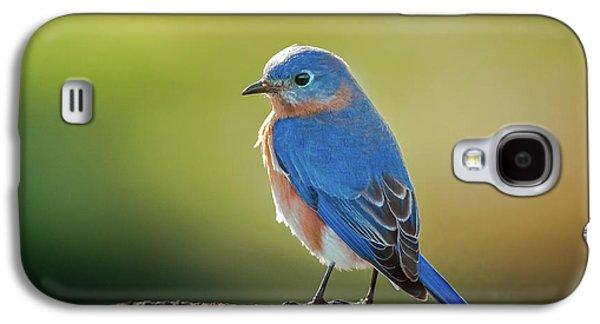 Lenore's Bluebird Galaxy S4 Case