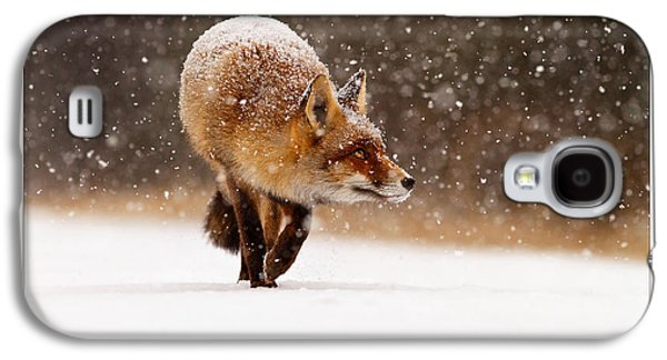 Let It Snow 2 - Christmas Card Red Fox In The Snow Galaxy S4 Case