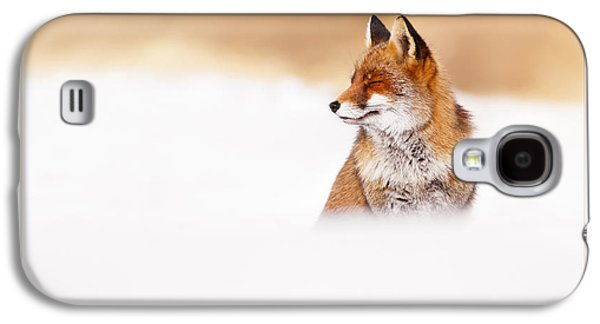 Let It Snow 3 - Christmas Card Red Fox In The Snow Galaxy S4 Case