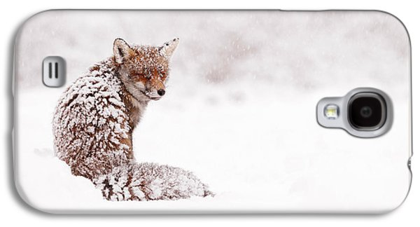 Let It Snow 4 - Christmas Card Red Fox In The Snow Galaxy S4 Case