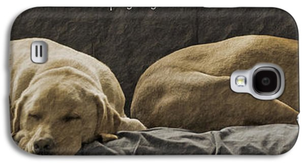 Sleeping Dog Galaxy S4 Cases - Let sleeping dogs lie Galaxy S4 Case by Gwyn Newcombe