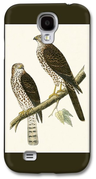 Levant Sparrow Hawk Galaxy S4 Case