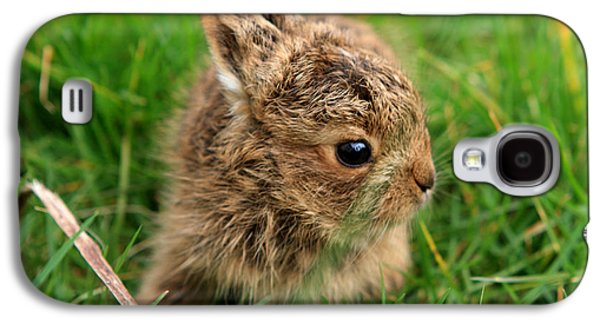 Leveret In The Grass Galaxy S4 Case by Aidan Moran