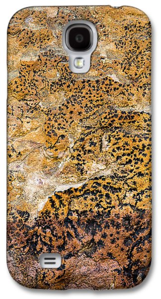 Galaxy S4 Case featuring the photograph Lichen Abstract, Bhimbetka, 2016 by Hitendra SINKAR