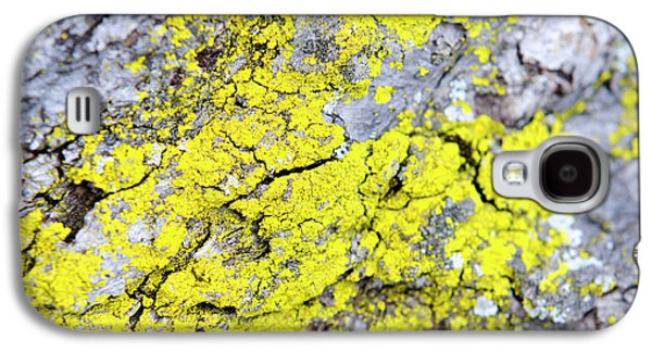 Galaxy S4 Case featuring the photograph Lichen Pattern by Christina Rollo