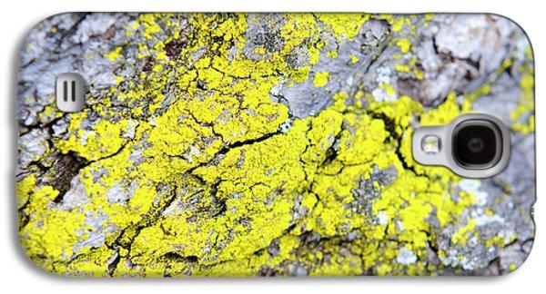 Lichen Pattern Galaxy S4 Case by Christina Rollo
