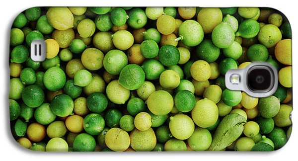 Limes Galaxy S4 Case by Happy Home Artistry