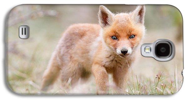 Little Fox Kit, Big World Galaxy S4 Case