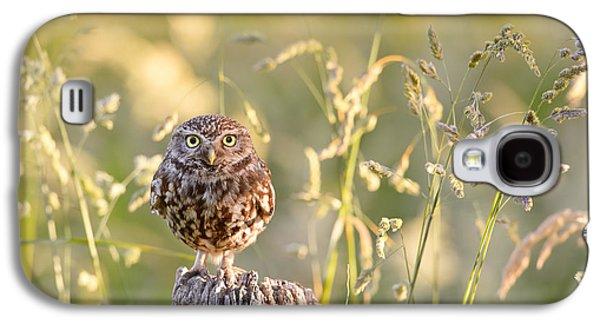 Little Owl Big World Galaxy S4 Case by Roeselien Raimond