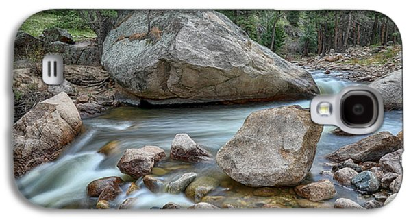 Little Pine Tree Stream View Galaxy S4 Case by James BO Insogna