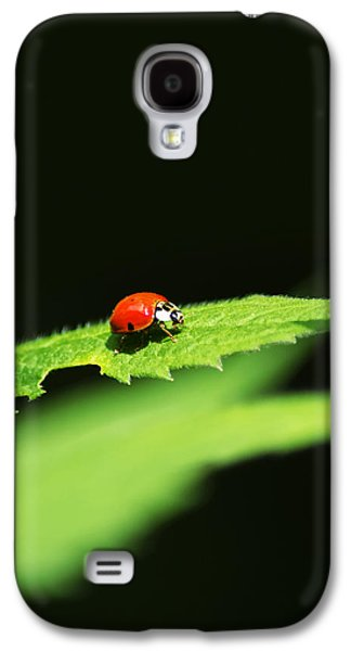 Little Red Ladybug On Green Leaf Galaxy S4 Case