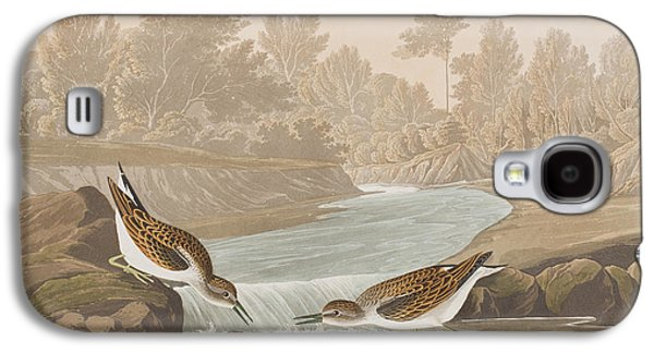 Little Sandpiper Galaxy S4 Case by John James Audubon