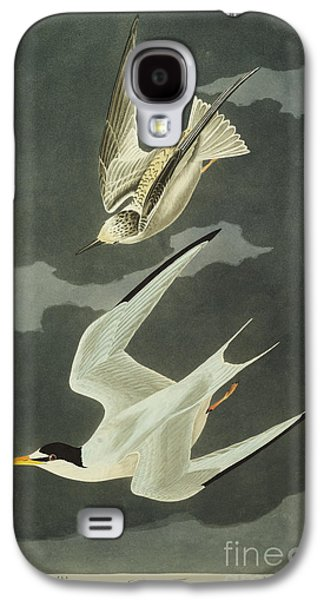 Little Tern Galaxy S4 Case by John James Audubon