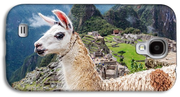 Llama At Machu Picchu Galaxy S4 Case by Jess Kraft