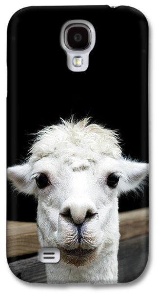 Llama Galaxy S4 Case by Lauren Mancke