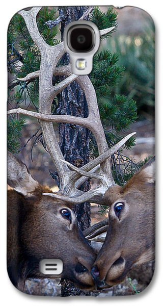 Locking Horns - Well Antlers Galaxy S4 Case