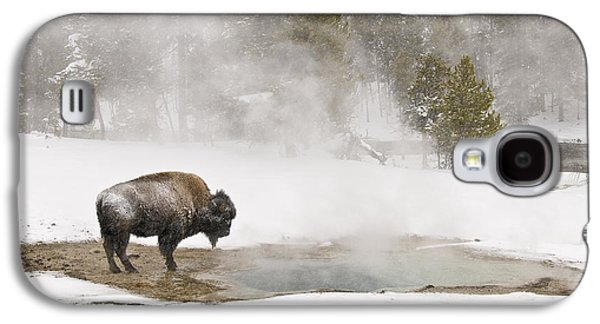 Galaxy S4 Case featuring the photograph Bison Keeping Warm by Gary Lengyel