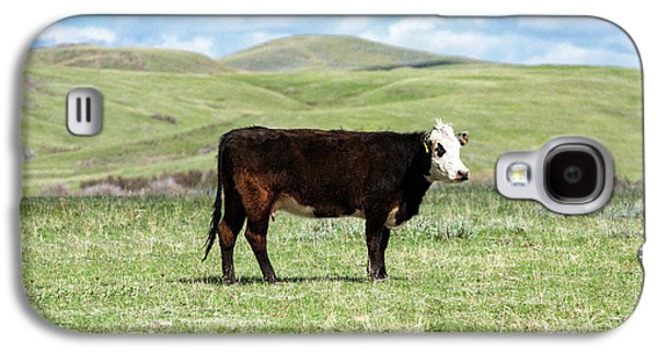 Lone Black Angus Cow Galaxy S4 Case by Todd Klassy