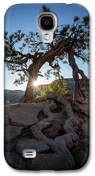 Lone Tree In Zion National Park Galaxy S4 Case by James Udall