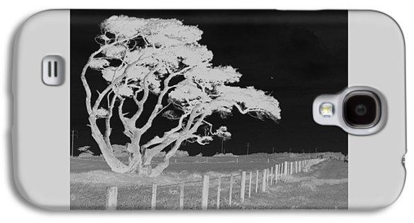 Lone Tree, West Coast Galaxy S4 Case